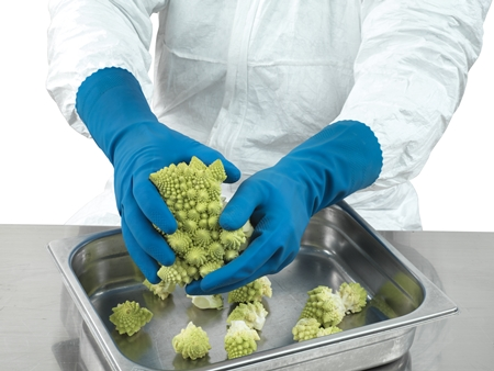 Ansell- ALPHATEC® 87-315 Kimyasal ve Sıvı Korumalı Profesyonel Gıda İşleme Eldiveni (Çift-10)