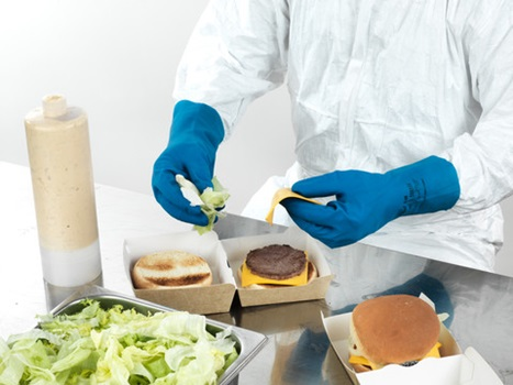 Ansell- ECONOHANDS® 87-195 Profesyonel Gıda İşleme Eldiveni